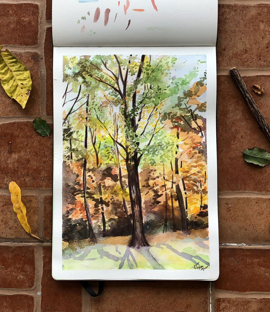 Watercolor painting of a forest during fall