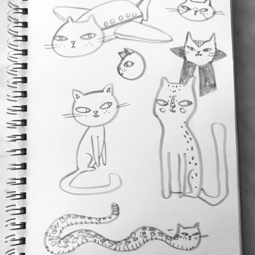 Doodle cats featuring Cat Airbus.