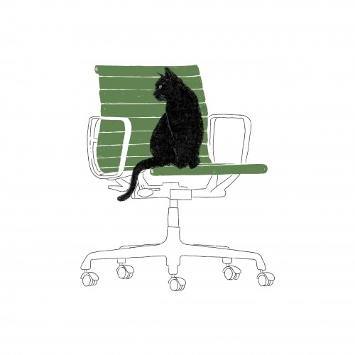 A Black Cat on an Eames Chair