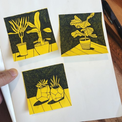 Post-it Plants, Part 2