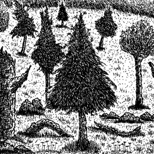 Inked Forest