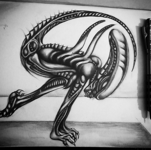 Xenomorph Searching for Zen Part I