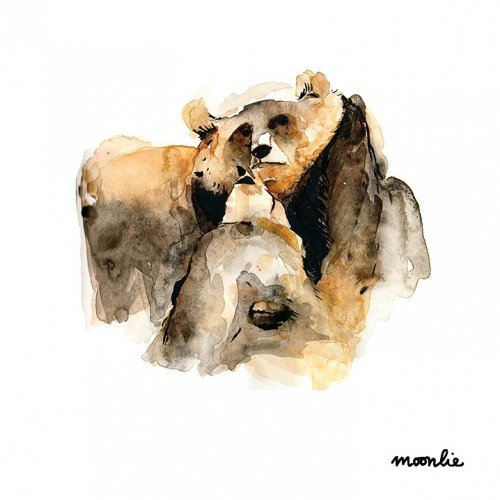 Watercolour bear