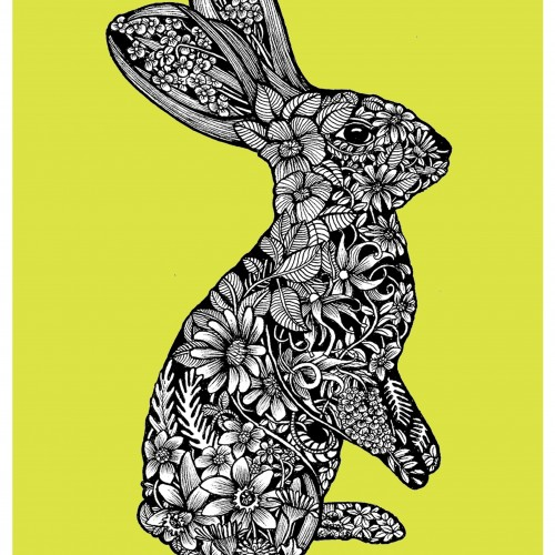 Illustrated Bunny