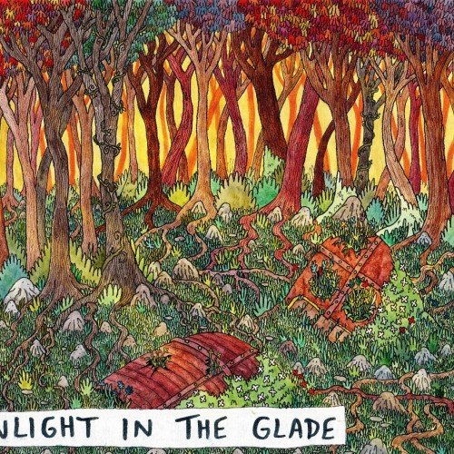 Sunlight in the glade