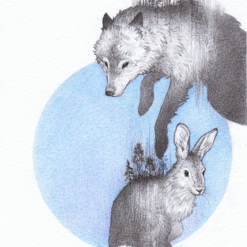Wolf and hare