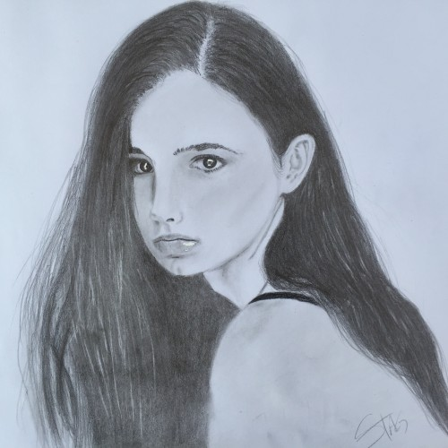 Drawing a Model