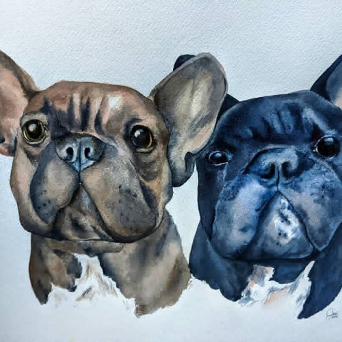 Watercolor Frenchies