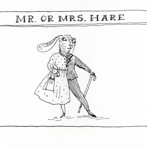 Mr or Mrs Hare