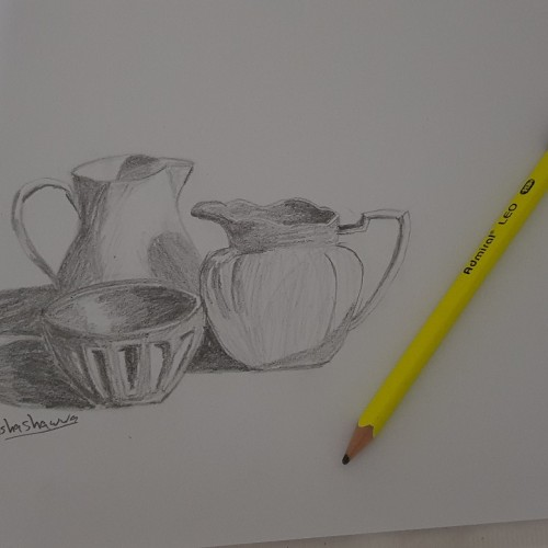 Still life- pencil drawing