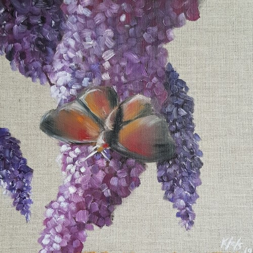 10x10 butterfly flower oil