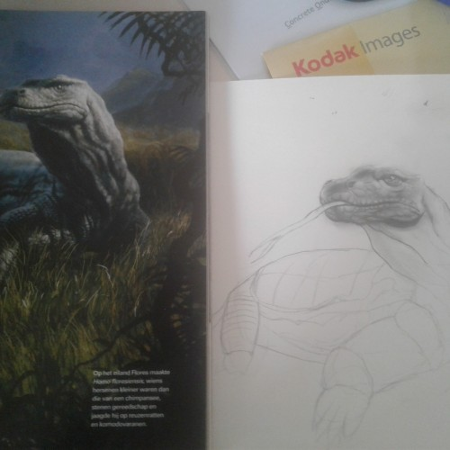 Komodo Dragon (WIP)