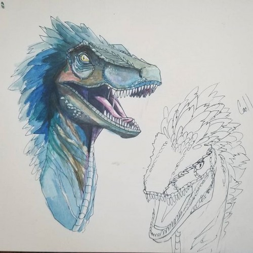 Raptor watercolor