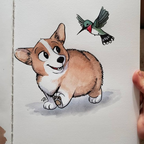 Puppy and Hummingbird friends