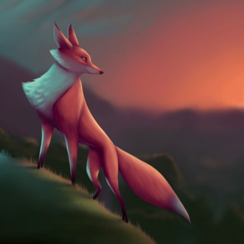 Fox on a Hill at Sunset