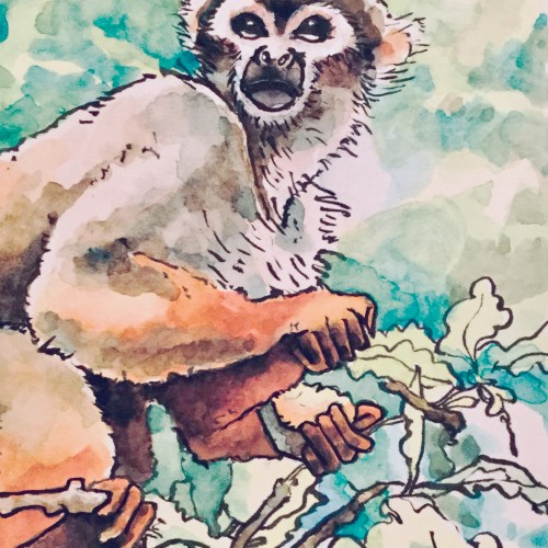 Squirrel Monkey - Watercolor