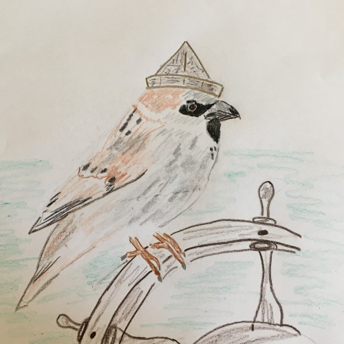 Seagoing Sparrow