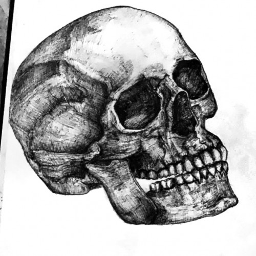 Basic skull made with ink