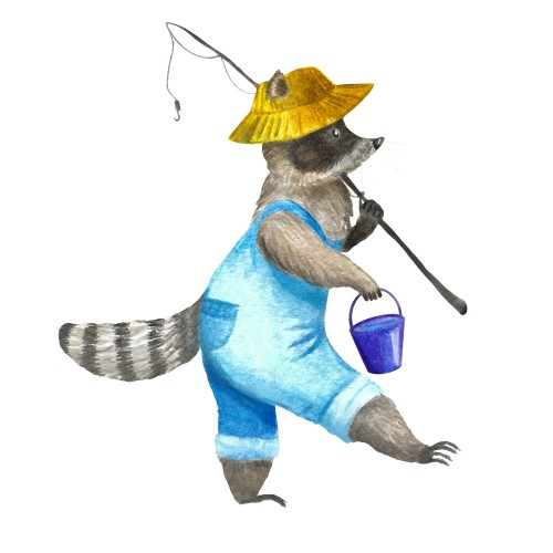 Raccoon the Fisher